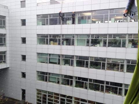 Austausch Raffstore mit Fassadenkletterer